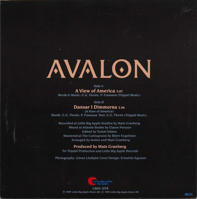 Avalon - A View Of America (7''Vinyl)