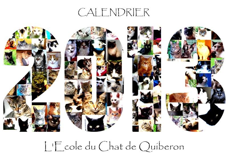 couverture calendrier 2013