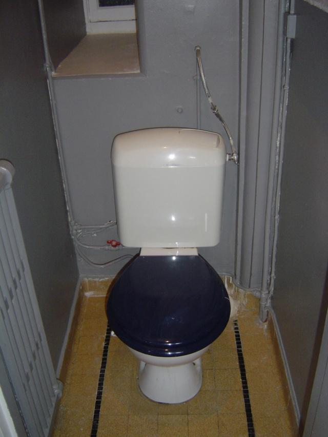 Conseil d co toilettes cache compteur page 2 for Quelle couleur pour un wc