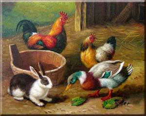 Poules,lapins et compagnie