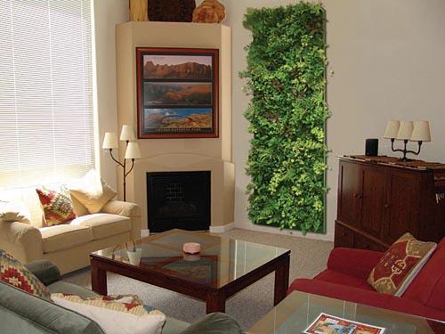 Faire son mur vert - Fabriquer son mur vegetal ...