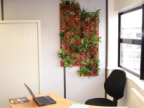 Faire son mur vert - Faire briller aluminium oxyde ...