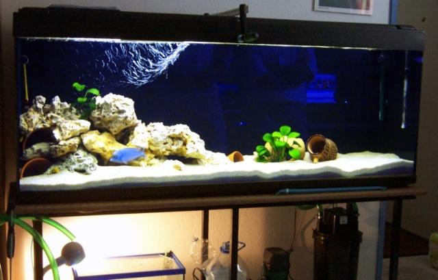 Mon bac 350 litres for Aquarium 350 litres
