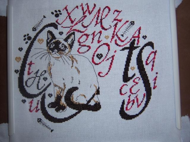 http://i47.servimg.com/u/f47/13/07/10/76/100_3913.jpg