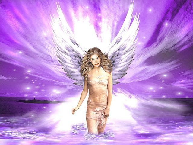 dans fond ecran ange violet ange211