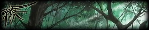 Forêt Syrène