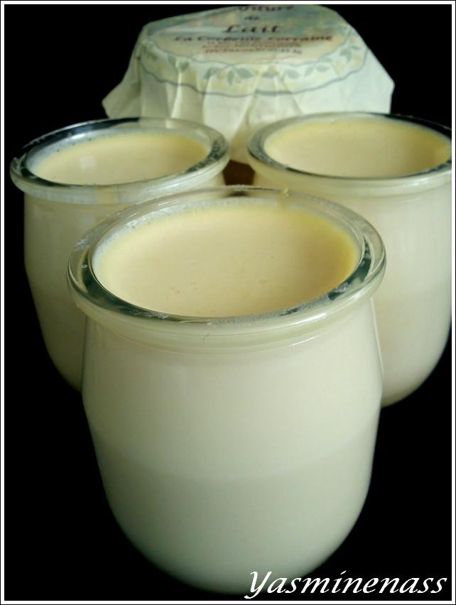 yaourt24.jpg
