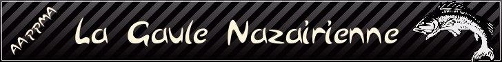 Bienvenue sur le Forum de la Gaule Nazairienne