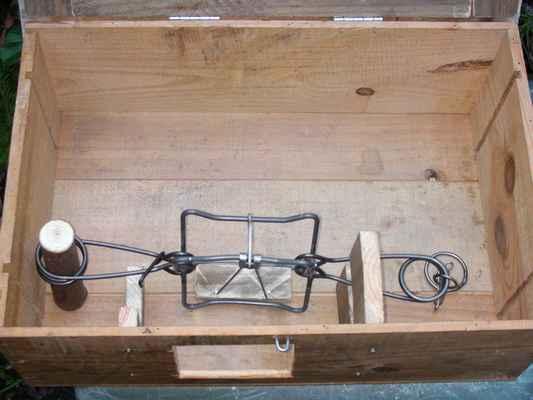 boite fouine pour pi ge en x de 13x13. Black Bedroom Furniture Sets. Home Design Ideas
