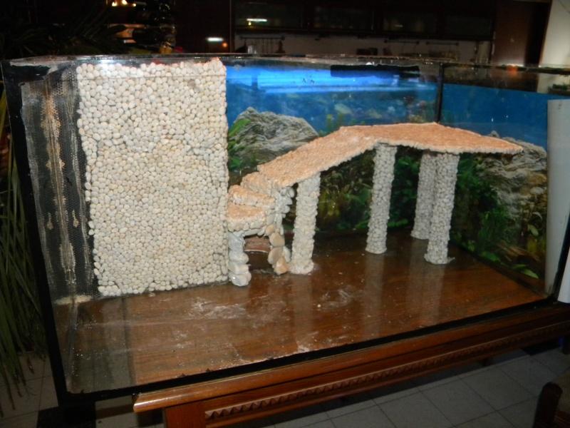 Aquarium en preparation for Filtre aquarium tortue