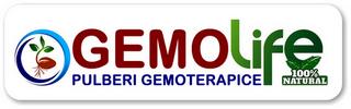 https://i47.servimg.com/u/f47/19/17/38/41/5_gemo10.png